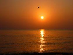 Рассвет в Дангриге,...