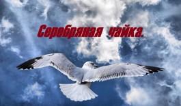 Обложка произведения Серебряная чайка.