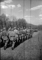 Обложка произведения Стрелковый батальон.