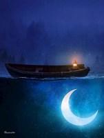 Обложка произведения Кому льётся лунный свет, или сон в стекле
