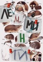 Обложка произведения Лемминги