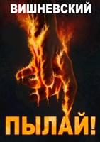 Обложка произведения Холодное пламя: Пылай!