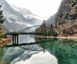 Обложка произведения Мост