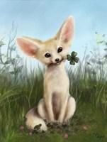 Обложка произведения Маленькая верескучая лисичка Фенек - история в картинках